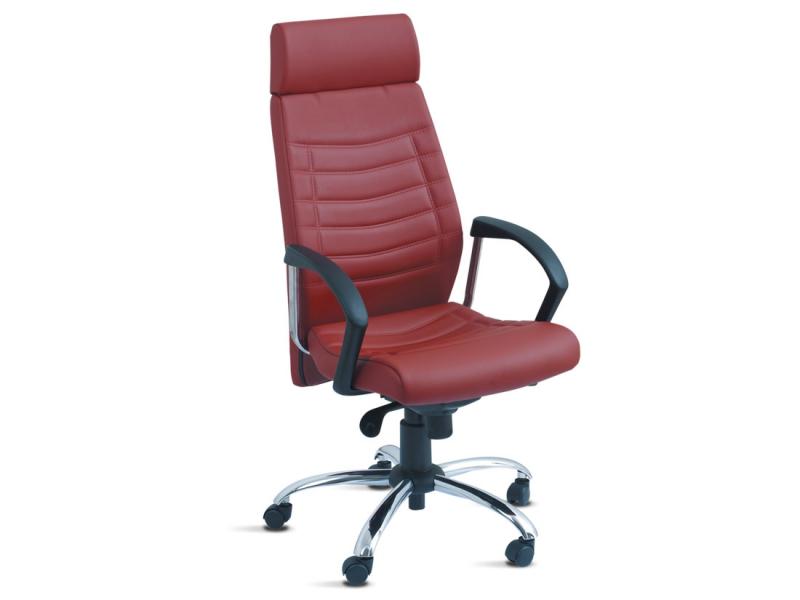 Onde Encontrar Cadeira para Escritório Ergonômica na Residencial Cândido Ferreira - Cadeiras Industriais Ergonômicas